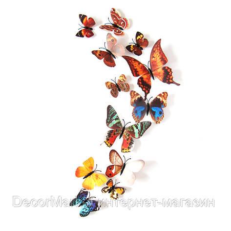 Набор бабочек 3D на магните, КОРИЧНЕВЫЕ цветные, фото 2