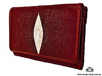 Женский кошелек из кожи ската Mosart Custini 2756