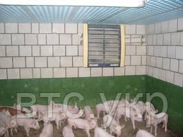 Отопление Свинофермы