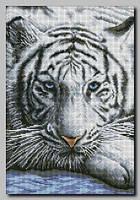 Схема для вышивки бисером Белый тигр