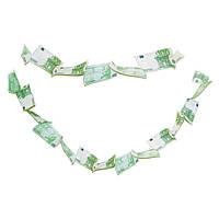 Денежная гирлянда Евро, фото 1