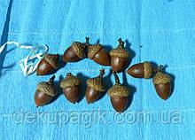 Жолудь натуральний 2,5-3,5 см, набір 9штук