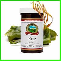 Бурая водоросль, Келп НСП (Kelp Nsp) Для щитовидной железы. При йододефиците. Иммунная система, обмен веществ