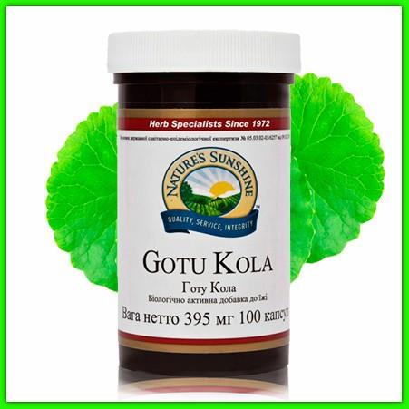 Готу Кола НСП (Gotu Kola Nsp). Для мозга, памяти и реакции. Ускоряет заживление ран, ссадин, ожогов