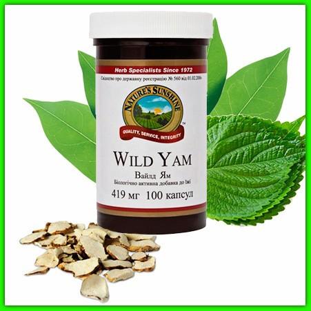 Дикий Ямс НСП (Wild Yam Nsp) Для защиты женского организма. Нормализует давление и работу половых желез