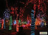 Гирлянда уличная Дюралайт,влагозащищенная  10 м Мультицветная RGB, фото 4