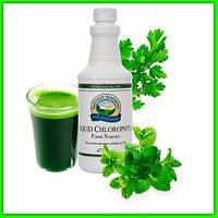Хлорофилл жидкий НСП (Chlorophyll LiquidNsp) Для детоксикации Витамин К Регенерация тканей Заживление