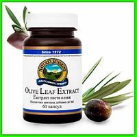Экстракт листьев оливы НСП, Olive Leaf Extract Nsp Противовирусное Противогрибковое Противопаразитарное