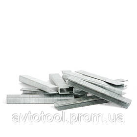 Скоба для степлера PT-1615 18мм 10.8*1.40*1.60мм 10000шт/упак. (PT-8218 Intertool)