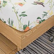 Простынь на резинке Птицы 150x200+25 см Berni, фото 2
