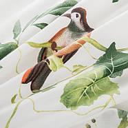 Простынь на резинке Птицы 150x200+25 см Berni, фото 4