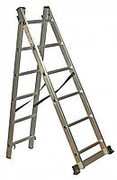 Лестница универсальная 2-составная Кентавр 2х10