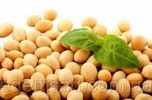 Соя натуральная без ГМО (соевые бобы), 1 кг