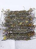 Подарочный набор (5) в деревянном ящике, фото 3