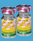 Вакцина живая V.H. + H-120 (болезнь Ньюкасла, инфекционный бронхит) (2000 доз)