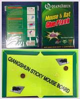 Клеевая ловушка от грызунов, средняя — безопасное средство для борьбы с грызунами