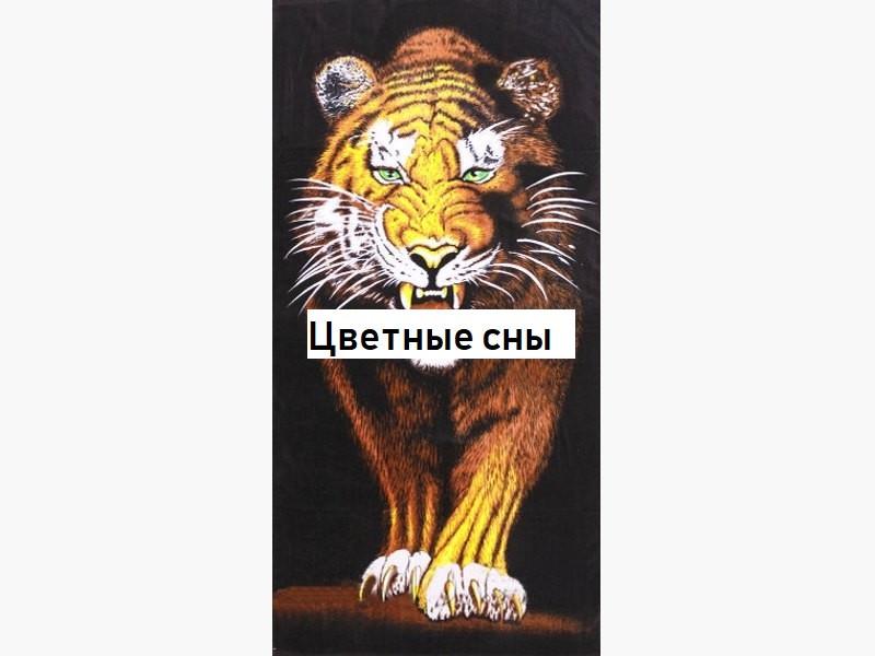 Пляжное полотенце с Тигром