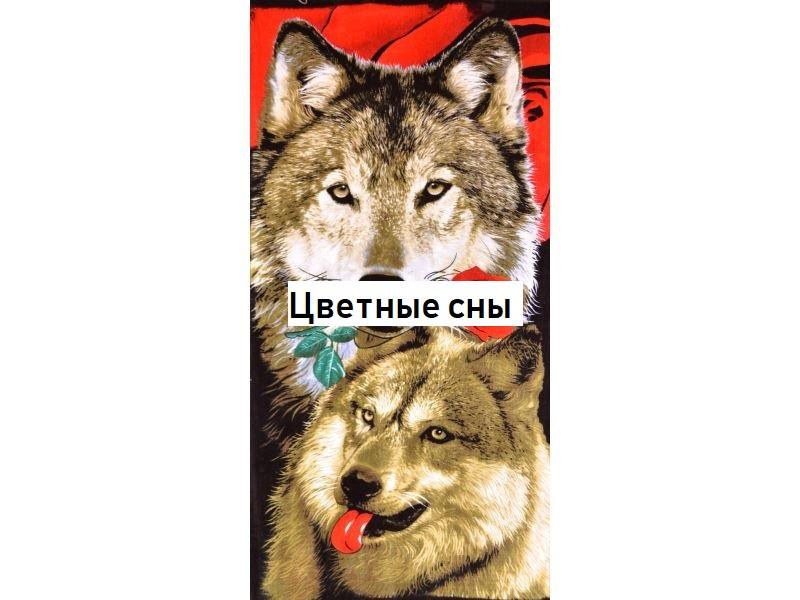 Пляжное полотенце Волки