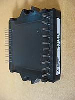 PS11035-Y2