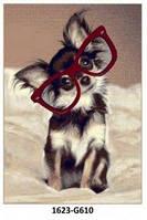 Ковёр бежевый с рисунком Собака в очках