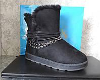 Сапоги женские зимние угги (UGG). Полусапожки замша, женские ботинки с мехом, фото 1