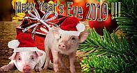 Вафельная картинка год свиньи 2019 (31)