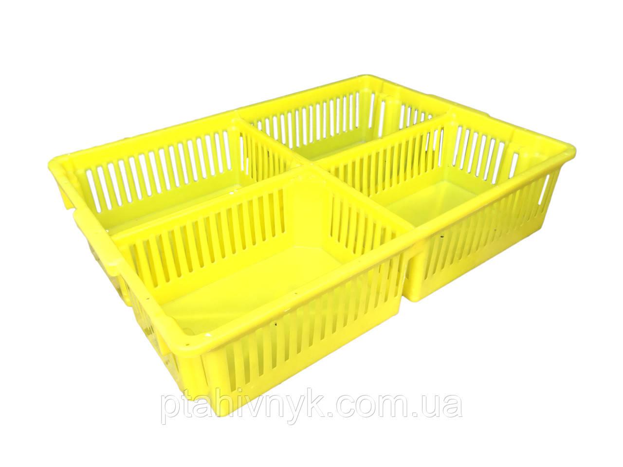 Ящик большой для перевозки суточных цыплят с четырьмя  делениями