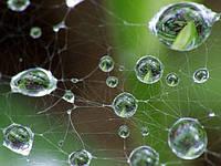 Гидроизоляция фундамента - как избежать ошибок