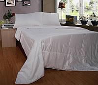 Одеяло с натуральным шелком 200х220см Word of Dream