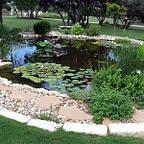 Сад пруд фонтан