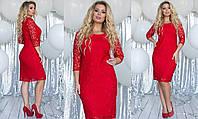 Облегающее гипюровое женское платье средней дины (7расцв) 48-54р.