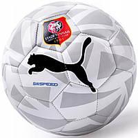 Мяч футбольный Puma Evospeed Size 5