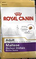Royal Canin Maltese Adult (Роял Канин) - сухой корм для взрослых собак породы Мальтийская болонка 500 г