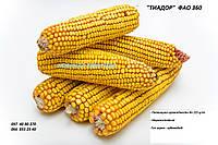 """Семена кукурузы """"Тиадор"""" ФАО 360, (фракция стандарт) гибрид F1, (Семанс Франция)"""