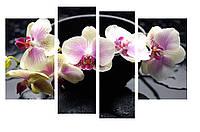 Модульная картина Декор Карпаты 110х70 см Орхидеи (M4-c213)