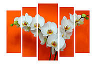 Модульная картина Декор Карпаты 120х80 см Белые Орхидеи (M5-С-4)