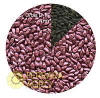 Краска для семян красно-пепельная Orbis D-17 для семян подсолнечника, сои, фасоли и др.
