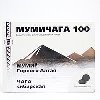 Мумичага 100 (для заживления ран, язв, ожогов, при тяжелых инфекциях, при лучевой и химиотерапии)