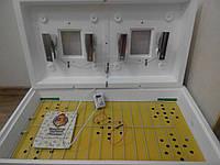 Инкубатор Рябушка-2 ИБ-130, цифровой терморегулятор