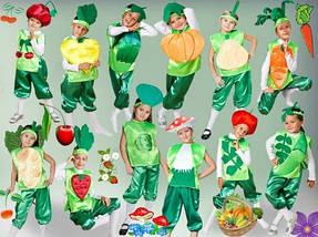 Карнавальные костюмы сад и огород