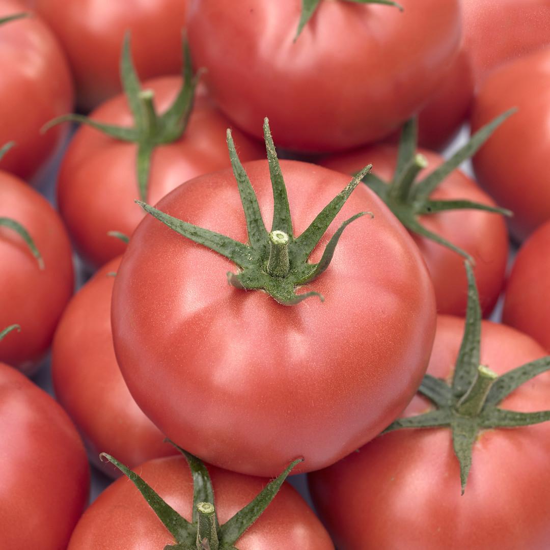 Семена томата Мамстон F1 (500 сем.)