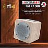 Портативная Блютуз колонка JAKCOMBER NBY-3080 FM Повер Банк micro USB SD AUХ беспроводная Bluetooth колонка, фото 5