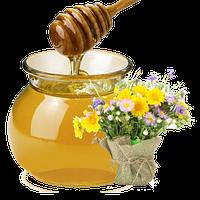Мед разнотравье + лыпа,лис  1л
