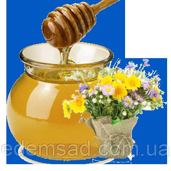 Мед липа + разнотравье, 1л