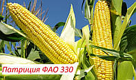 Семена кукурузы Патриция ФАО 300 (фракция стандарт) кремнистая,
