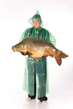 больше доступной информации о рыбацких дождевиках