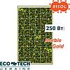 Солнечная панель BISOL Spectrum Marble Gold 250 Wp поликристалл, цвет Золотой Мрамор