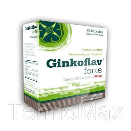 поддержка памяти, внимания и мышления Ginkoflav Forte (60 caps), фото 2
