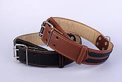 Collar ошейник двойной с  вплетенной косой 25мм 38-50см