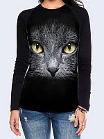 Лонгслив-реглан Своенравная кошка, фото 1